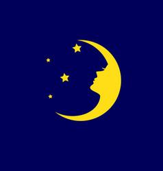 luna dream vector image