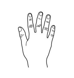 number 5 or five hand sign line art style vector image