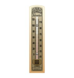 Old Thermometer vector
