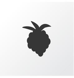 raspberry icon symbol premium quality isolated vector image