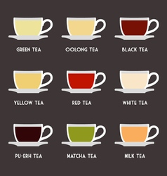 Tea Types Flat Design Infographics vector