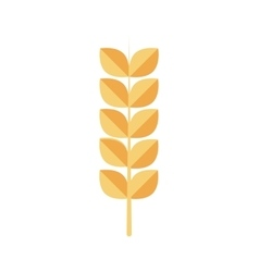 Wheat ears healthy food organic icon vector