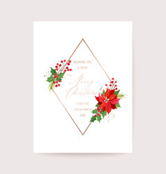 winter poinsettia flower card christmas vector image
