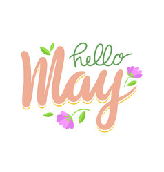 hello may banner spring season greeting lettering vector image