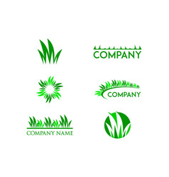 Set of grass logo design template vector