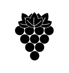 black contour grapes fruit icon image vector image