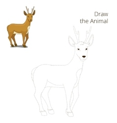 Draw the forest animal roe deer cartoon vector image vector image