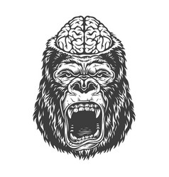 Angry gorilla in monochrome style vector