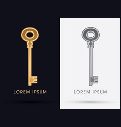luxury key vector image