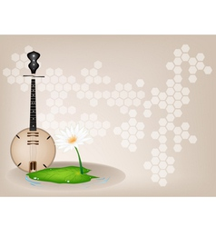 Musical Dan Nguyet Background vector image vector image