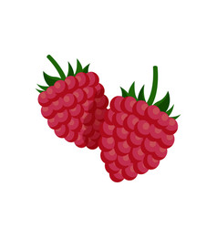 Sweet small raspberry with fruit-stalk poster vector
