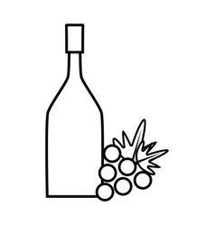 figure wine bottle with grape fruit vector image