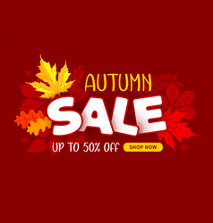 advertising banner about seasonal autumn sale vector image