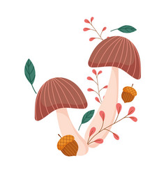 autumn mushrooms acorn branch leaves isolated vector image