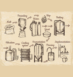 Beer production steps hand drawn pictures of vector