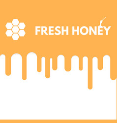 fresh honey drop vector image