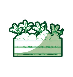 Green silhouette of wooden box with beets and half vector