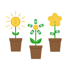 growing money tree shining coin with dollar sign vector image