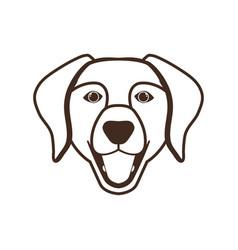 Head cute labrador retriever dog on white vector
