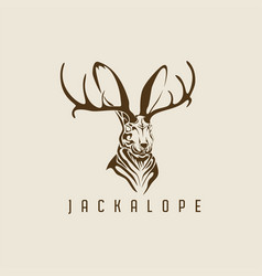 jackalope logo vector image