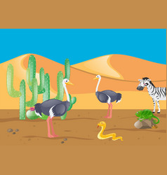 Ostrich and other animals in desert vector