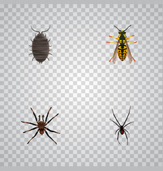 Realistic spinner arachnid dor and other vector