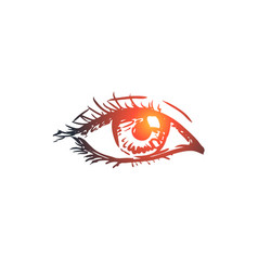 vision eye look see eyeball concept hand vector image
