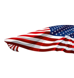 Flag of the United States of America vector image vector image