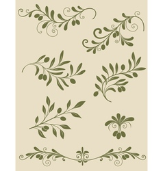 olive decorative vector image