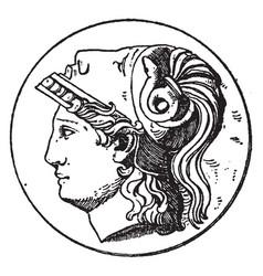 Minerva head vintage vector
