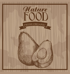 Avocado nature food fresh food hand drawn vector