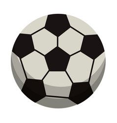 Ball soccer sport equipment vector