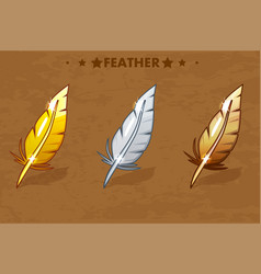 Gold silver and bronze feather vector