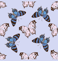 seamless pattern with hand drawn colored alcides vector image