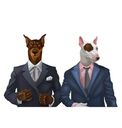 doberman and bullterrier dressed vector image vector image