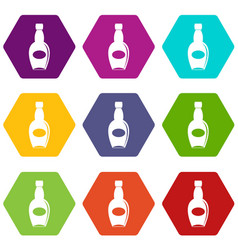 Big bottle icon set color hexahedron vector