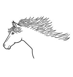 Horse line drawing vector