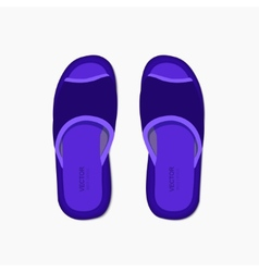 modern flippers on gray background vector image