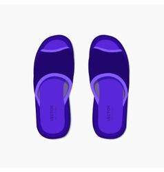 modern flippers on gray bakground vector image