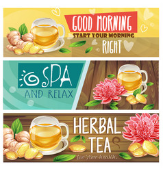 Relaxing morning herbal tea banners set vector
