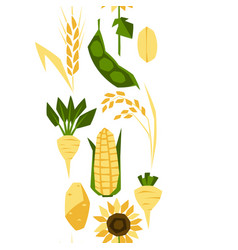 seamless pattern with agricultural crops vector image