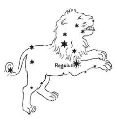 The lion vintage vector