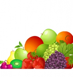 bright fruit vector image vector image