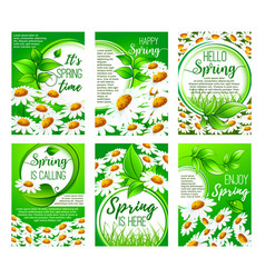 spring flower greeting card set for holiday design vector image vector image