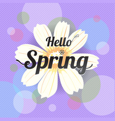 floral spring with white flower vector image