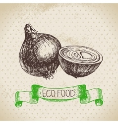 Hand drawn sketch onion vegetable Eco food vector image