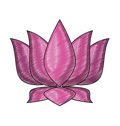 lotus flower symbol scribble vector image