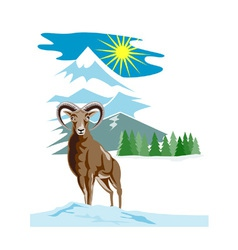 Mouflon Sheep Mountain Goat vector