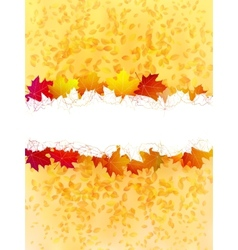 Colorful autumn leaves on a old paper plus EPS10 vector image vector image