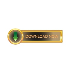 gold button with downloads sign vector image